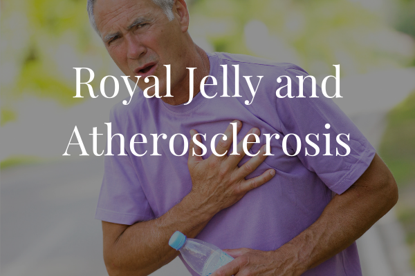 Royal Jelly & Atherosclerosis