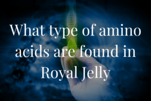 What Type of Amino Acids are Found in Royal Jelly?