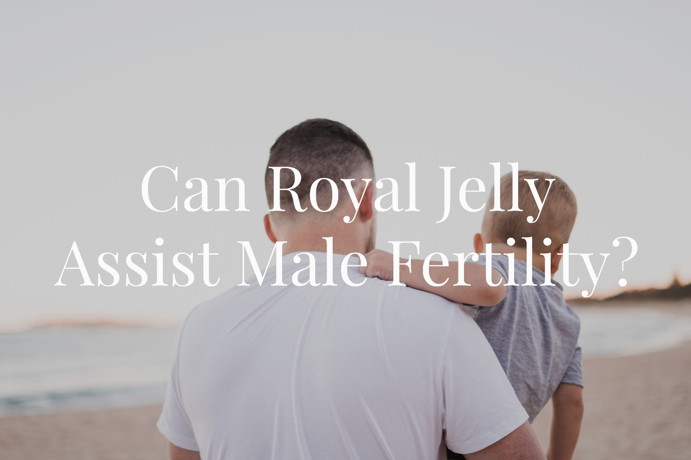 Can Royal Jelly Aid Male Fertility?