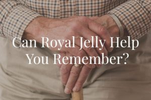 Can Royal Jelly Help You Remember?