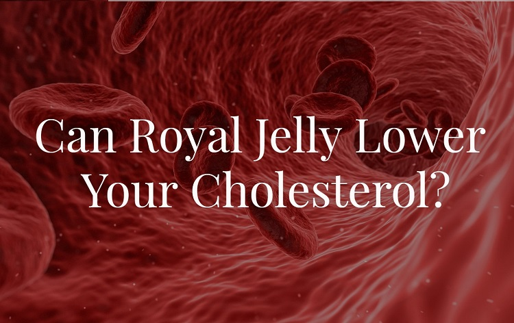 Can Royal Jelly Lower Your Cholesterol?