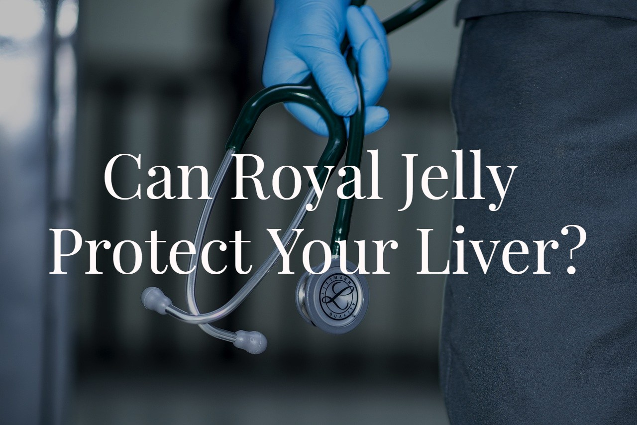 Can Royal Jelly Protect The Liver?