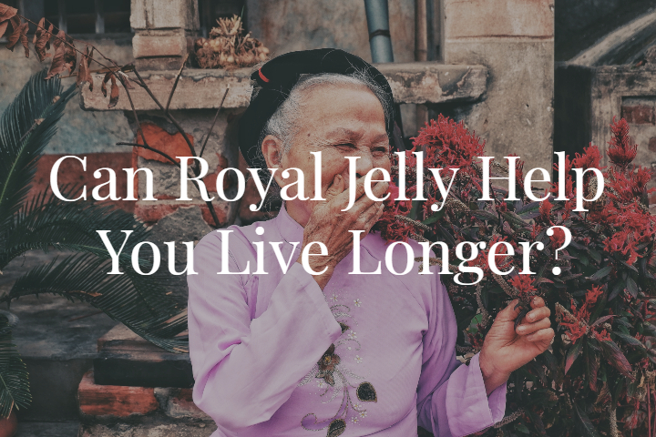 Can Royal Jelly Help You Live Longer?