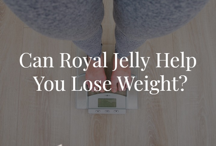 Can Royal Jelly Help You Lose Weight?